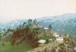 Southern Ecuadorean Andes.