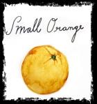 Small Orange Journal